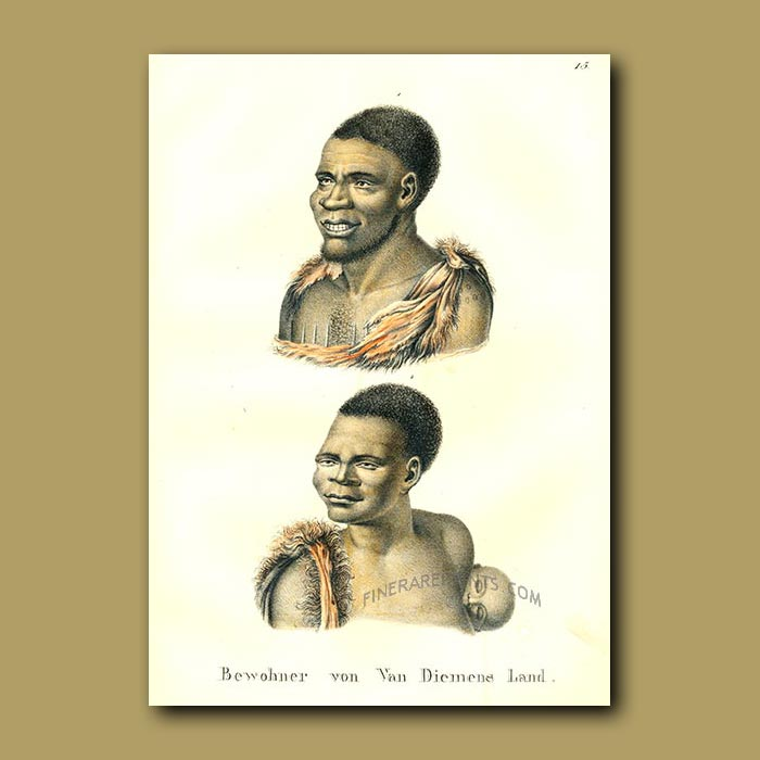 Antique print. Inhabitants of Van Diemens Land
