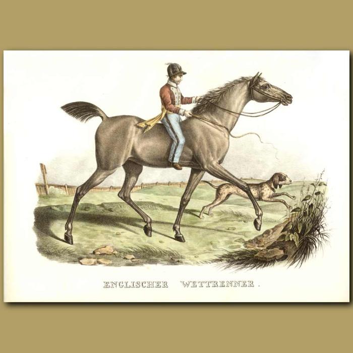 Antique print. English Race Horse, Jockey and dog