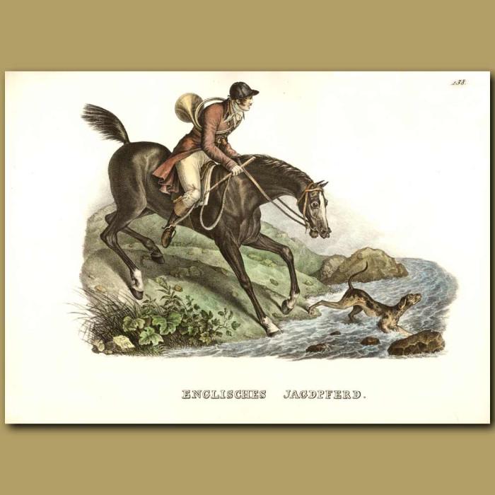 Antique print. English Hunting Horse