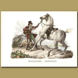 English Hunting Horse