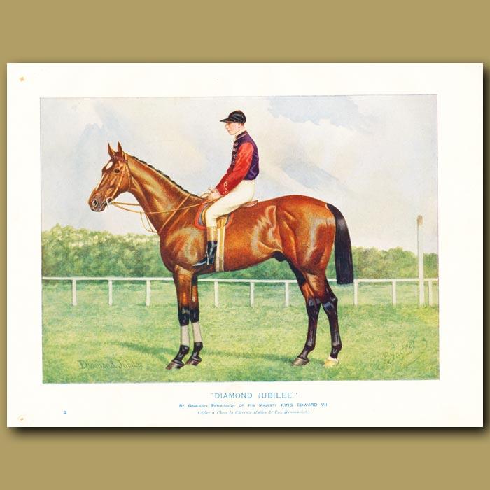 Antique print. The Horse 'Diamond Jubilee'