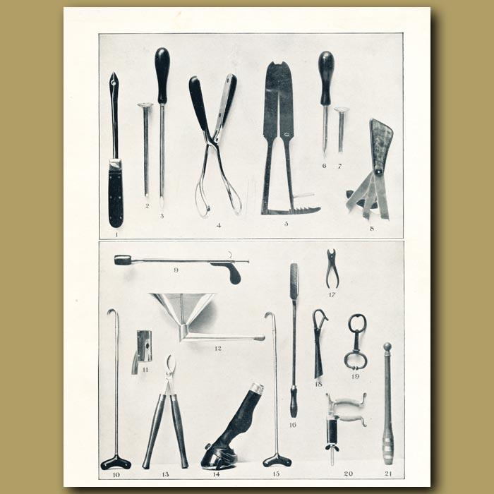 Antique print. Veterinary instruments