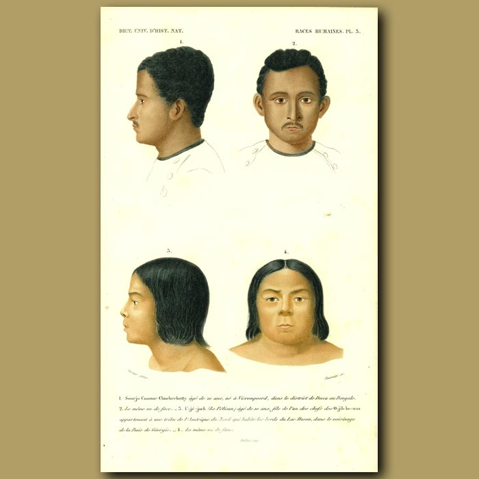 Antique print. People From India And Native Americans