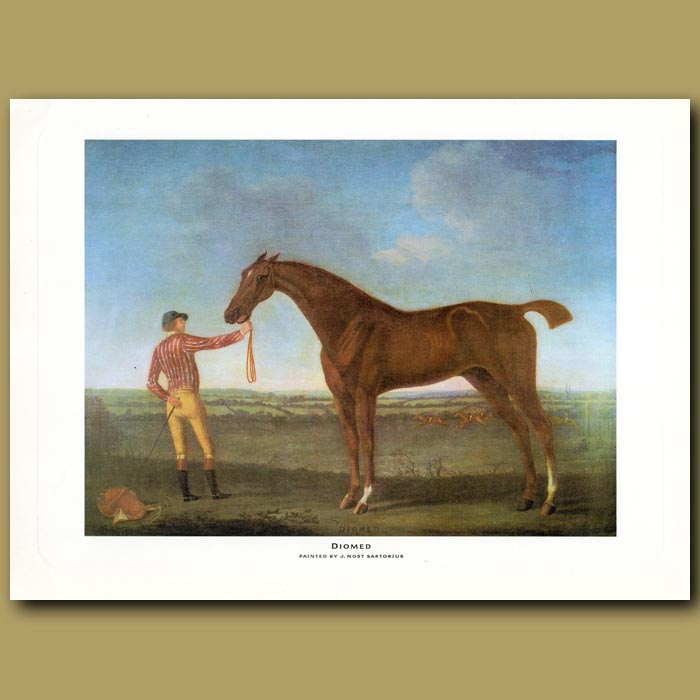"""Antique print of race horse """"Diomed"""""""
