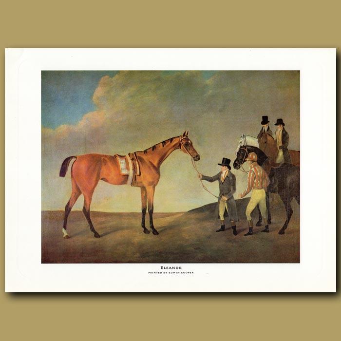 Antique print. Race Horse Eleanor