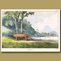 The Manis (Giant Pangolin Anteater)