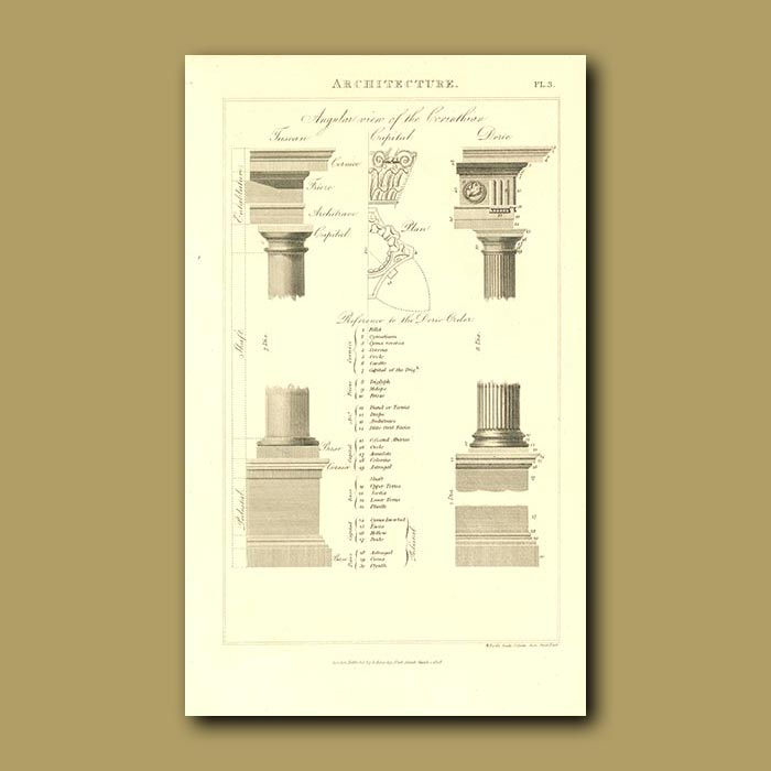 Antique print. Architecture