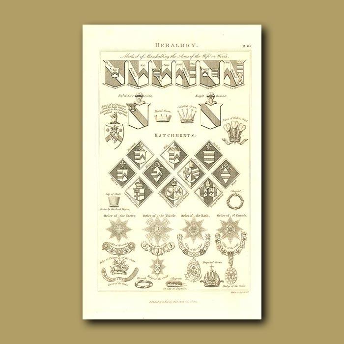 Antique print. Heraldry