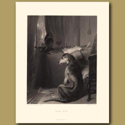 High Life: Wolfhound