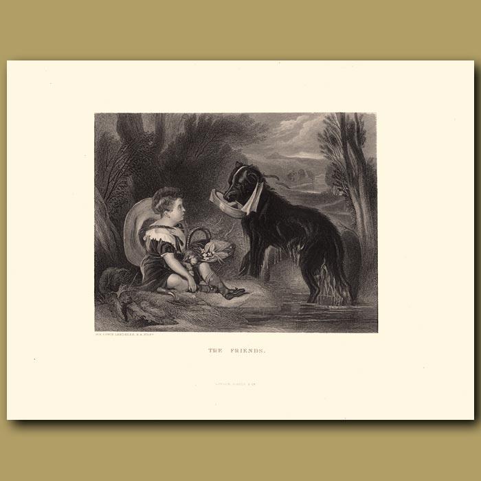 Antique print. The Friends: Retriever