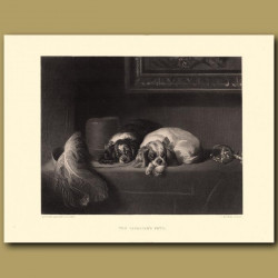 The Cavalier's Pets: King Charles Spaniels