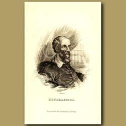Rondeletius