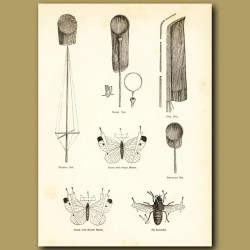 Butterfly Collecting Equipment