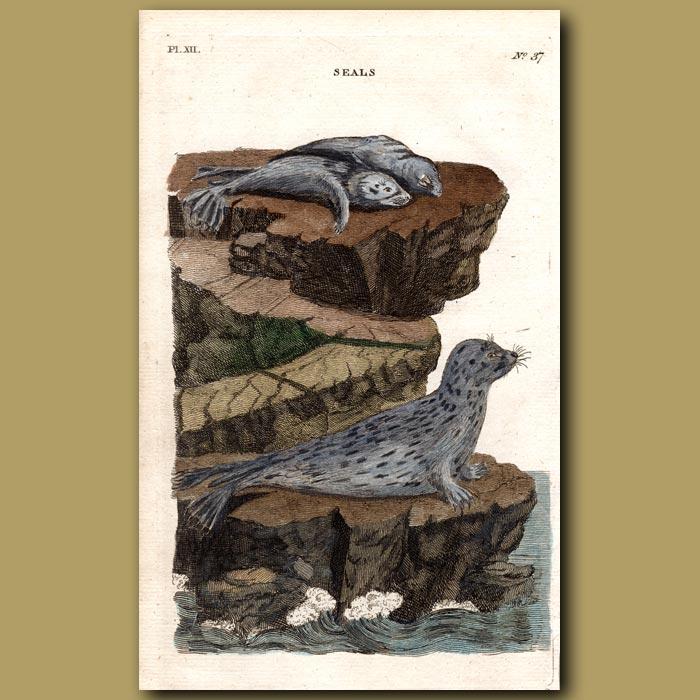 Antique print. Seals
