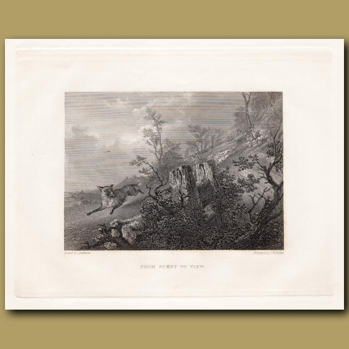 Antique print. From scent to view
