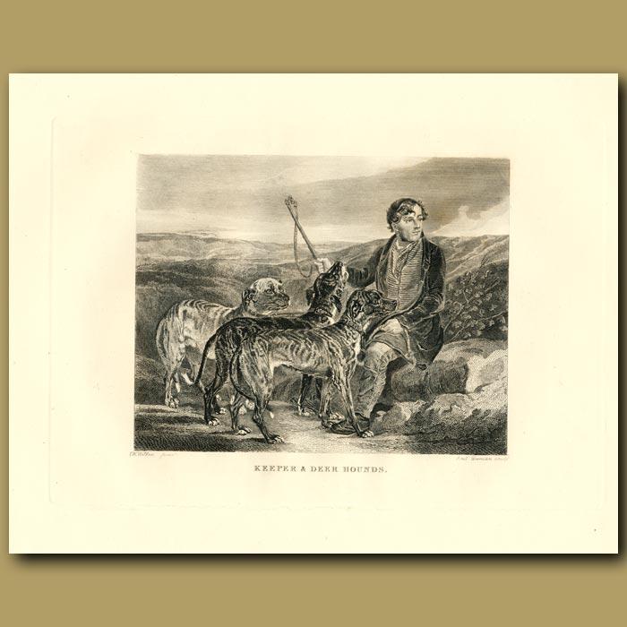 Antique print. Keeper And Deerhounds