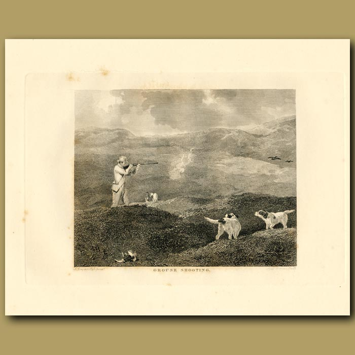 Antique print. Grouse Shooting