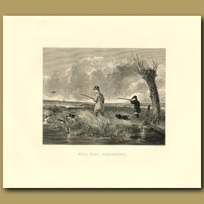 Antique print. Wild Fowl Shooting