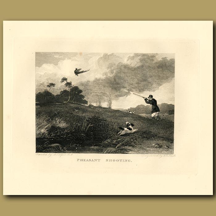 Antique print. Pheasant Shooting