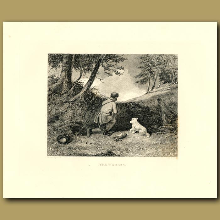 Antique print. Terrier