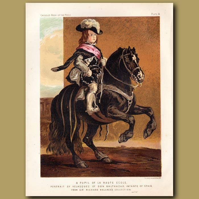 Antique print. A pupil of La Haute Ecole
