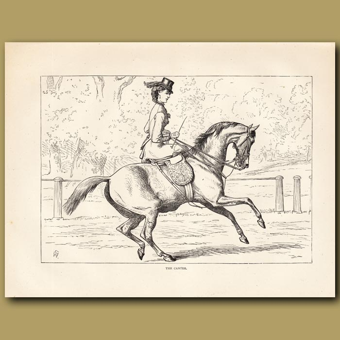Antique print. The Canter