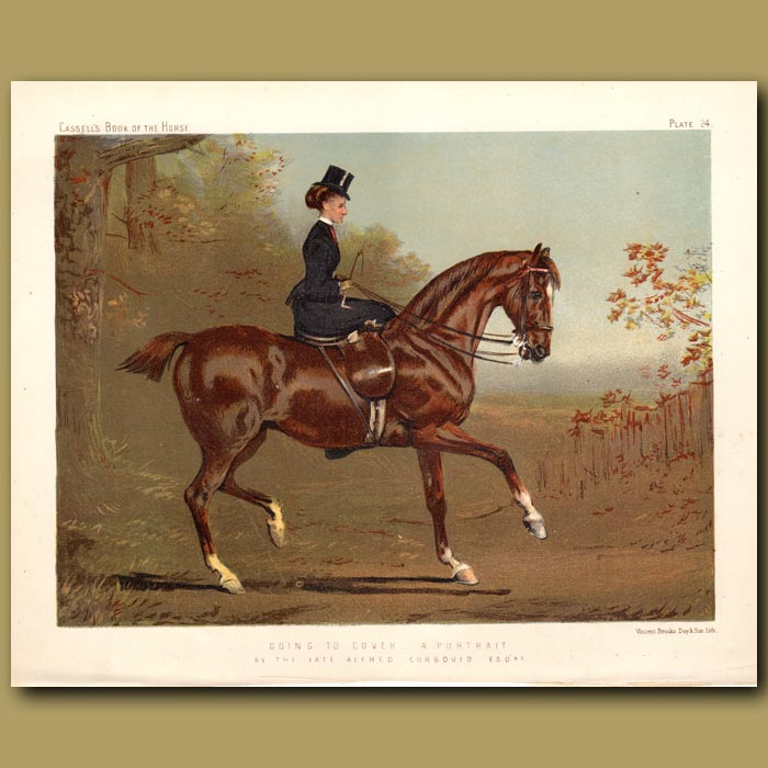 Antique print. Going to Cover, a portrait by the late Alfred Corbould Esq