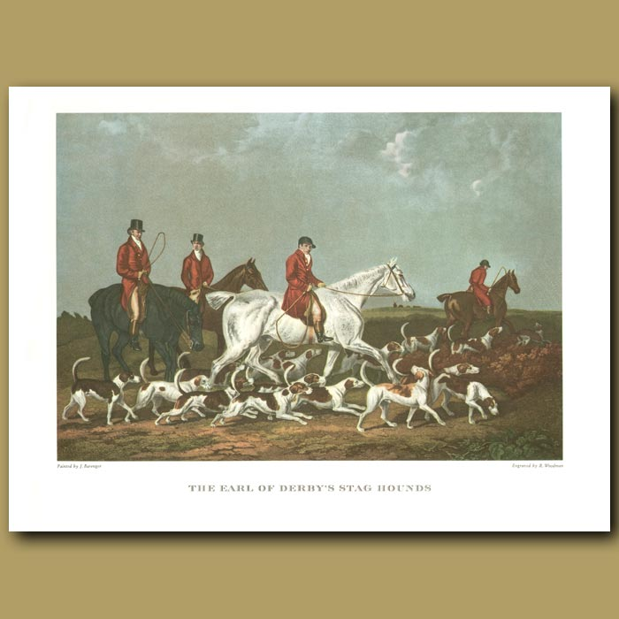 Antique print. The Earl of Derby's Stag Hounds