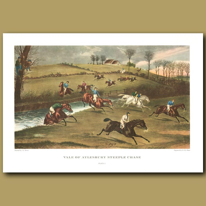 Antique print. Vale of Aylesbury Steeple Chase. Plate 2