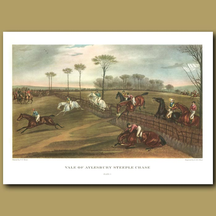 Antique print. Vale of Aylesbury Steeple Chase. Plate 3
