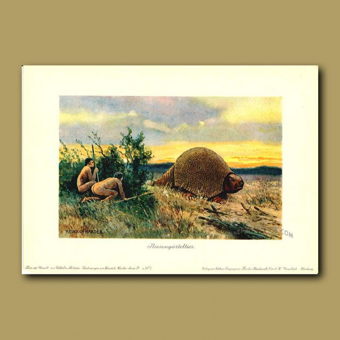 Antique print. Giant Armadillo with cavemen stalking it