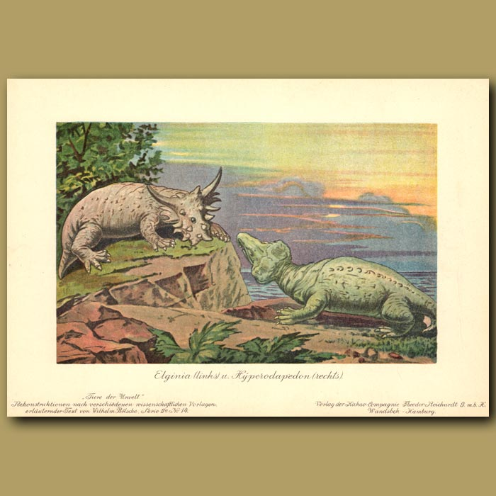 Antique print. Pareiasaur and Rhynochosaur