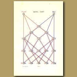 Mating Chart