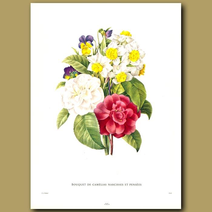 Antique print. Bouquet de Camelias Narcisses et pensees