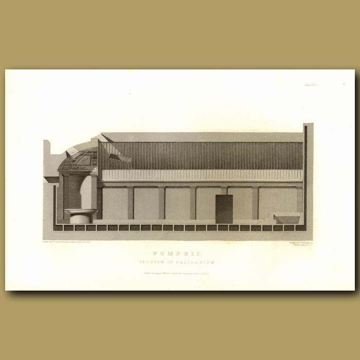 Antique print. Pompeii: Section of Calidarium (hot plunge bath)