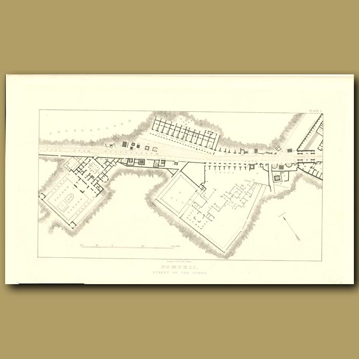 Antique print. Pompeii: Plan of the Street of the Tombs