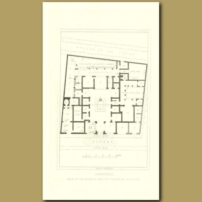 Antique print. Pompeii: Plan Of The House Of Sallust