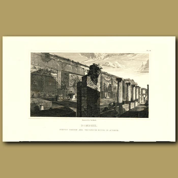 Antique print. Pompeii: Pseudo garden and triclinium House of Actaeon