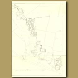 Pompeii: Plan