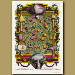 Mushrooms, Flowers And Gourds