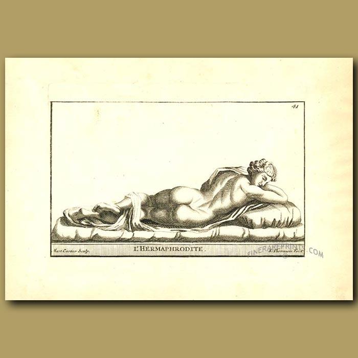Antique print. Hermaphrodite