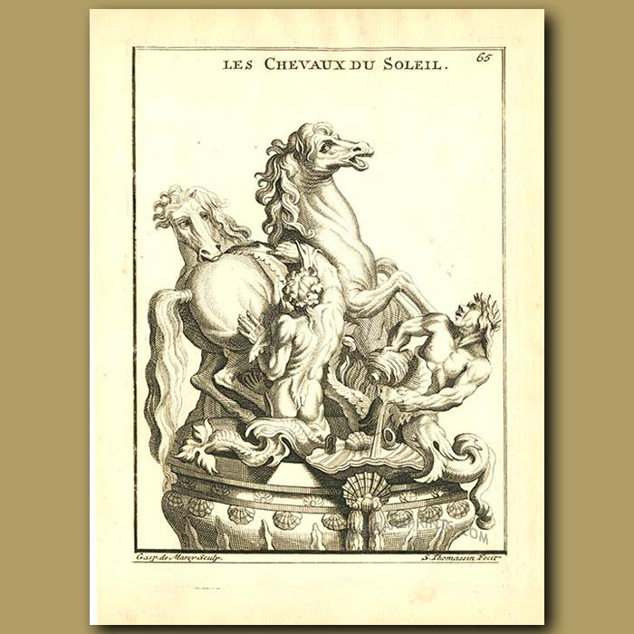 Antique print. Horses of the Sun which draw the chariot of the sun god Helios