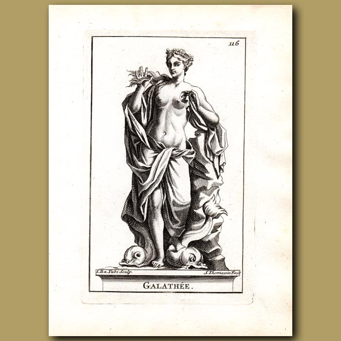 Antique print. Galathea