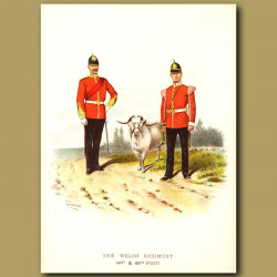 The Welsh Regiment (41st And 69th Foot)