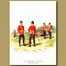 The Hampshire Regiment (37th And 67th Foot)