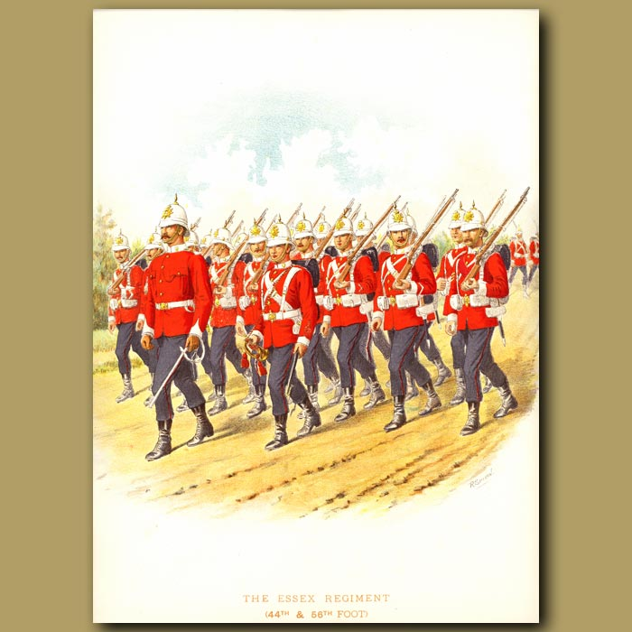 Antique print. The Essex Regiment (44th And 56th Foot)