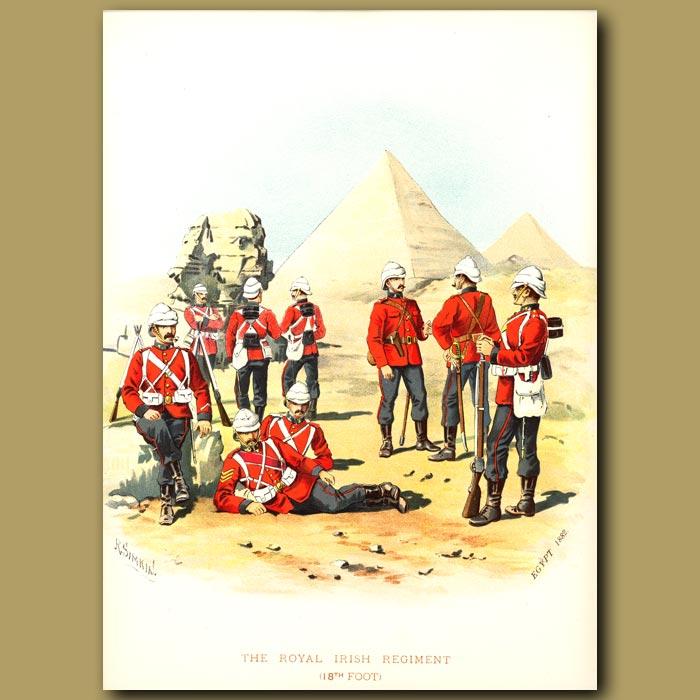 Antique print. The Royal Irish Regiment (18th Foot)