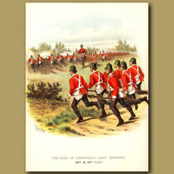 The Duke Of Cornwall's Light Infantry (32nd And 46th Foot)