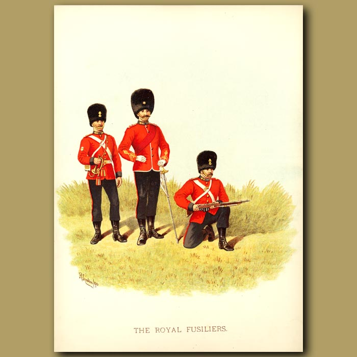 Antique print. The Royal Fusiliers