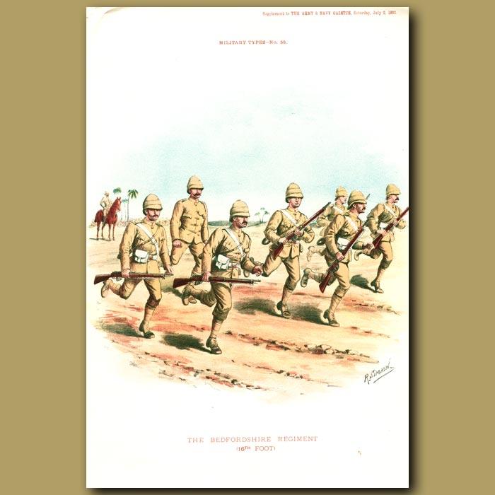 Antique print. The Bedfordshire Regiment (16th Foot)